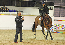 Jumping and dressage coaching